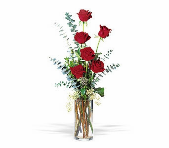 Expression of Love - Designs East Florist Dallas