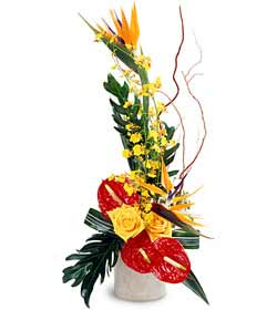 Tropical Treasures ™ Arrangement