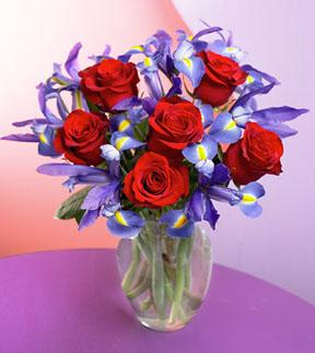 Iris & Red Rose Bouquet   - Designs East Florist Dallas