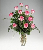 Dozen  Rossini Roses - Designs East Florist Dallas