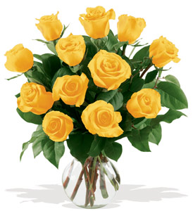 12 Yellow Roses - Designs East Florist Dallas