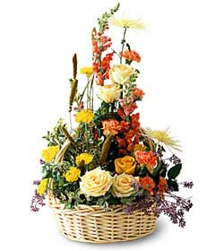 Sunshine Splendor ™ Arrangement