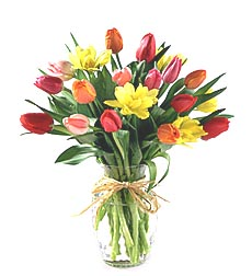20 Spring Tulips - Designs Eat Florist Dallas