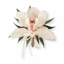 Cymbidium Orchid Corsage - Designs East Florist Dallas