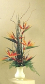 Exotic Birds Paradise - Designs East Florist Dallas