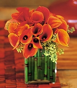 Bronze Callas - Designs East Florist Dallas