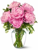 Peonies in Pink - Designs East Florist Dallas