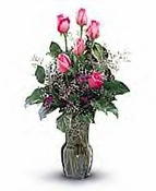 1/2 Pink Roses - Designs East Florist Dallas