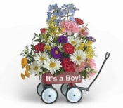 Baby's First Wagon (Boy) - Designs East Florist Dallas