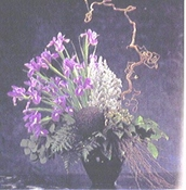 Irises - Designs East Florist Dallas