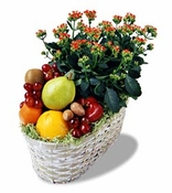 Fruits & Kalancho plant - Designs East Florist Dallas