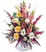Blooming Elegance ™ Arrangement