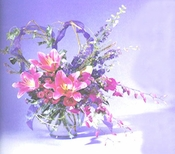 Orchids & Stargazer Bouquet - Designs East Florist Dallas