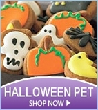Halloween Pet Gift Baskets