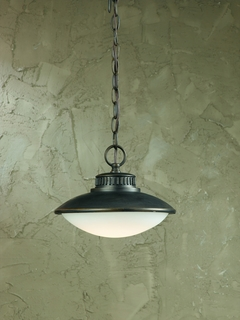 79107-14 Triarch International 1 Light Led Exterior Pendant