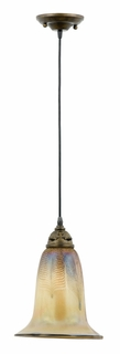 FBGF1509CP Quoizel Lighting Fabrice with Golden Feather Glass Piccolo Pendant in Capital Bronze
