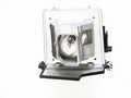 Viewsonic PJ406D Replacement Projector Lamp - RLC-012