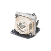 Dell 3200MP Replacement Projector Lamp - 310-2328 - Discontinued