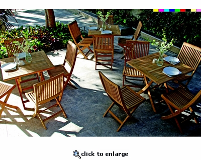 Rennes Folding Chair Set of Two (UPS $75)