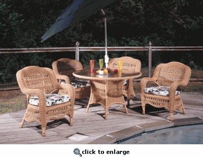 Camelback Dining Chair with Fran's Indoor/Outdoor Fabrics (UPS $25)