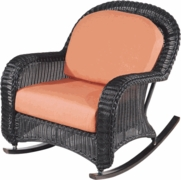 Coral Bay Rocker Cushions with Fran's Indoor/Outdoor Fabrics (UPS $25)