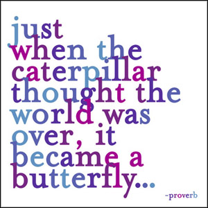 Just When The Caterpilar - Quotable Magnet