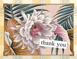 Star Flower Boxed Thank You 10-Pack