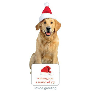 Paper House Holiday Golden Retriever Card