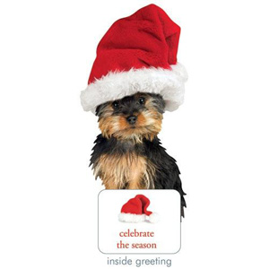 Paper House Holiday Silky Terrier Card