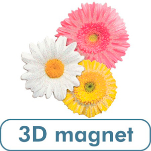 3 D Daisies Magnet