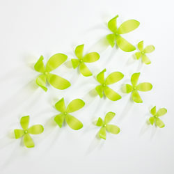 WallFlower Set Of 25 - Kiwi