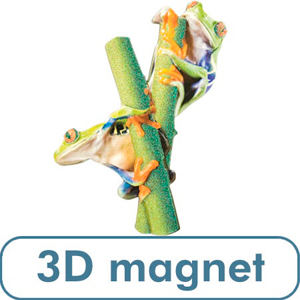 3 D Red-Eyed Tree Frog Magnet