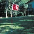 Backyard Flagstick Pole & Cup