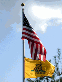 Free 2'x3' Gadsden Flag with Embroidered USA Flag