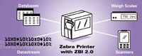 (Click to Enlarge) ZEBRA [48767-001] - >>> KIT ZBI 2.0 ENABLEMENT SOFTWARE FOR 5 PRINTERS (ITEM ALSO KNOWN AS : ZEB-48767001) [48767-001]