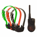 buy discount  SportDOG SD-825 SportHunter 3-dog