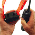 buy discount  How to Program the Collar Receiver for Multi-Dog Operation on the SD-2500