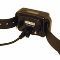 buy discount  Educator ET-402TS Collar on Charger