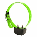 buy discount  RAPT 1400 Collar with Green Strap