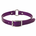 buy discount  Purple 3/4 in. Center Ring Day Glow Collar - 12 inch
