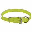 buy discount  Yellow 3/4 in. D-end Day Glow Collar