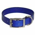 buy discount  Blue Standard Day Glow Collar