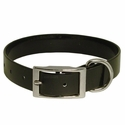 buy discount  Black Standard Day Glow Collar