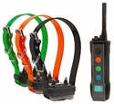 buy Dogtra Edge Remote Training Collar 3-dog shock collars