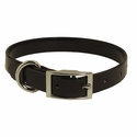 buy discount  Black 3/4 in. Standard Day Glow Collar