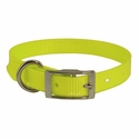 buy discount  Yellow 3/4 in. Standard Day Glow Collar