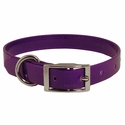 buy discount  Purple 3/4 in. Standard Day Glow Collar