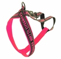 buy discount  CLEARANCE -- PINK Hurtta Padded Reflective Y-Harness for Dogs