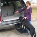 buy discount  Hitch Up Dog Step In Use