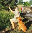 buy discount  Truck 'n Buddy as a Hunting Seat